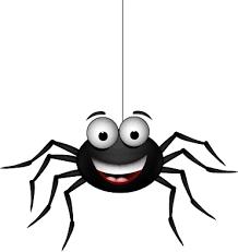 Les araignées de Saint-Roch